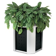 Anova Signature Planter, Powder Coated Panels