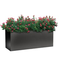 "Planters Perfect 60"" Rectangular Wide Series Rimmed Aluminum Planter"