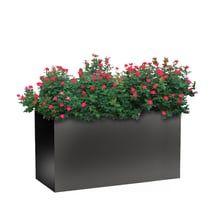 "Planters Perfect 46"" Rectangular Wide Series Rimmed Aluminum Planter"