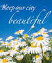 DAISIES - KEEP OUR CITY BEAUTIFUL
